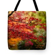 Acer Colors Tote Bag