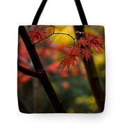Acer Finish Tote Bag