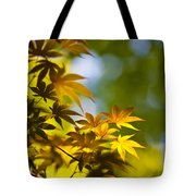 Acer Glow Tote Bag
