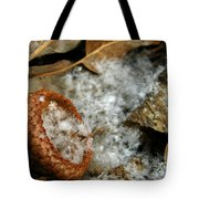 Acorn Cap Filled With Snow Tote Bag