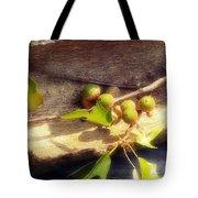 Acorn Shelter Tote Bag
