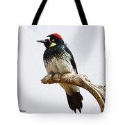 Acorn Woodpecker Tote Bag