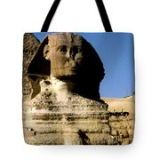 Acquire Knowledge Tote Bag