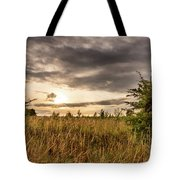 Across Golden Grass Tote Bag by Nick Bywater