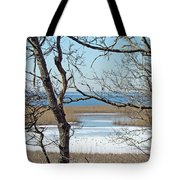 Across The Marsh To Woodneck Beach - Cape Cod Tote Bag