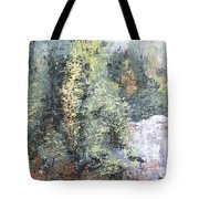 Across The Ravine Tote Bag