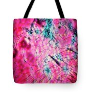 Adam And Eve The Creation Story Tote Bag