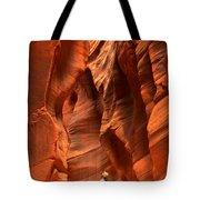 Adam Jewell In Buckskin Slot Canyon Tote Bag