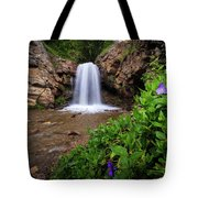 Adams Canyon Lower Falls Spring Tote Bag
