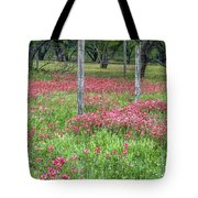 Adding A Splash Of Color-indian Paintbrush In Texas Tote Bag
