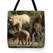 Addo Elephant Family Tote Bag