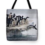 Adelie Penguin Pygoscelis Adeliae Tote Bag by Tui De Roy