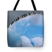 Adelies In Blue Iceberg Tote Bag