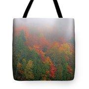 Adirondack Autumn Colors Tote Bag