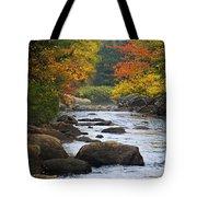 Adirondack Fall Stream 2 Tote Bag