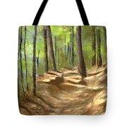 Adirondack Hiking Trails Tote Bag