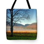 Adirondack Landscape 1 Tote Bag