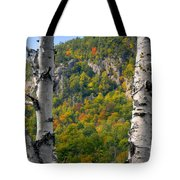 Adirondack Mountains New York Tote Bag