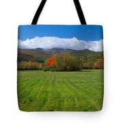 Adirondack Mountains, Upper State New Tote Bag