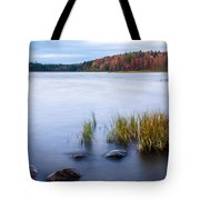 Adirondack View 4 Tote Bag