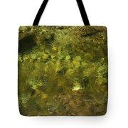 Adirondack Water Tote Bag