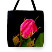 Admirers Tote Bag