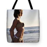 Admiring The Sunset Tote Bag
