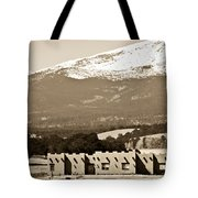 Adobe House Tote Bag