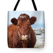 Adorable Brown Cow Standing On The Burren Tote Bag
