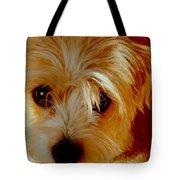 Adorable Daisy Tote Bag