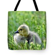 Adorable Goose Chick Tote Bag