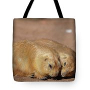 Adorable Pair Of Prairie Dogs Cuddling Together Tote Bag