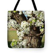 Adorned With Beauty Tote Bag