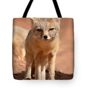 Adult Kit Fox Ears And All Tote Bag
