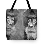 Adult Male Mandrills Black And White Version Tote Bag