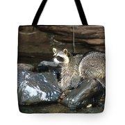 Adult Raccoon Hunting Tote Bag
