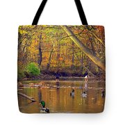 Adventure And Discovery Tote Bag