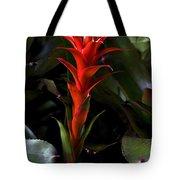 Aechmea  Bromeliad Flower Tote Bag