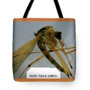 Aedes Fulvus Pallens- Mosquito Tote Bag