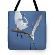 Aerial Ballet Tote Bag