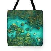 Aerial Of Two Kayakers Tote Bag