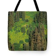 Aerial View Of Forest On Mountainside Tote Bag