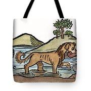 Aesop: Dog & Shadow, 1484 Tote Bag