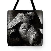 African Buffalo Bull Close-up Tote Bag