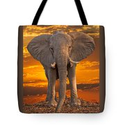 African Bull Elephant At Sunset Tote Bag
