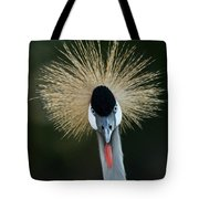 African Crowned Crane At The Omaha Zoo Tote Bag