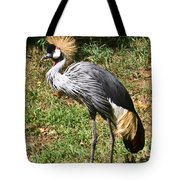 African Crowned Crane Poising Tote Bag