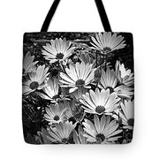 African Daisies In Black And White Tote Bag