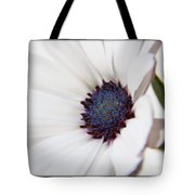 African Daisy  Sky And Ice Tote Bag