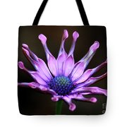 African Daisy Portrait Tote Bag